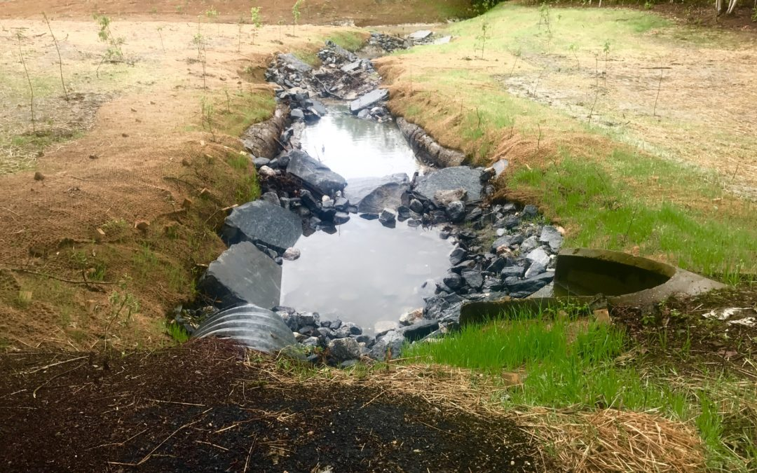 Stream restoration project nears completion