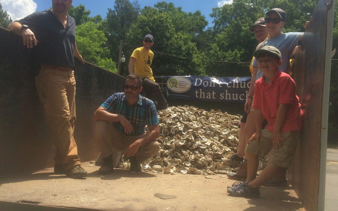 Oyster restoration taking off in Carter's Creek