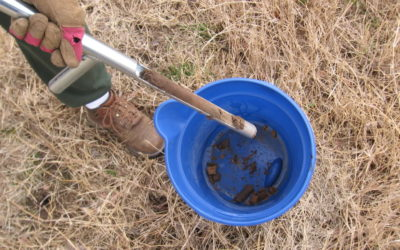 Culpeper SWCD and Virginia Cooperative Extension offer free soil tests to Madison County residents