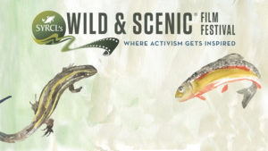 Salamander and native trout on banner image