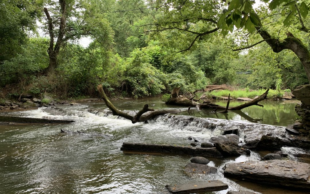 Mountain Run Initiative: Improving water quality in Culpeper