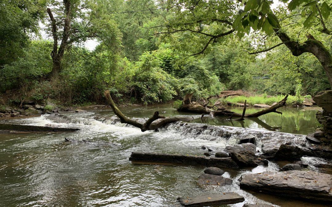 Mountain Run Initiative: Improving water quality in Culpeper