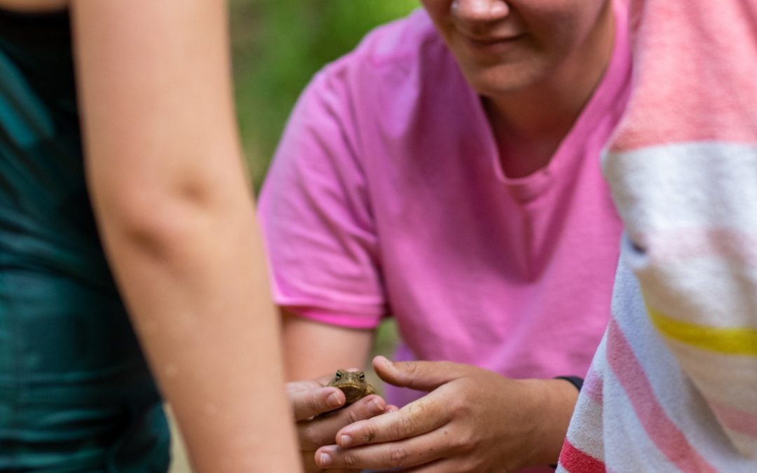 National Funder Creates Environmental Education Opportunities in Local Schools