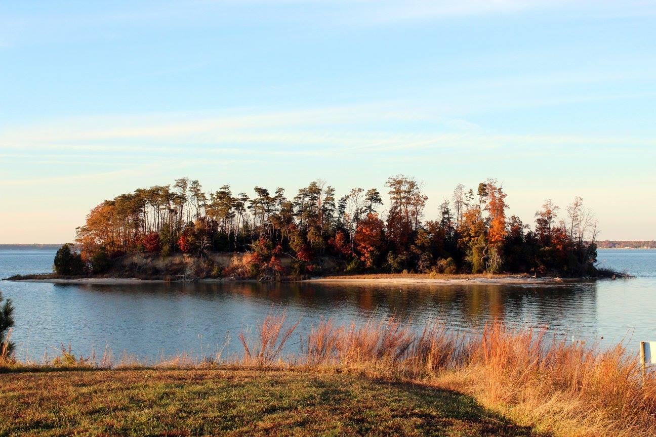 RAPPAHANNOCK RIVER WATERSHED WETLAND BOARD CONTACTS